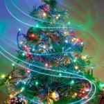 christmas-tree-4-1409262-m
